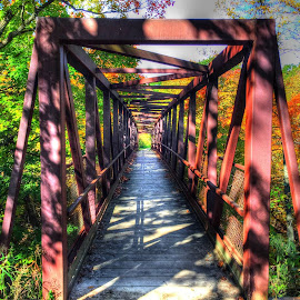 Bridge over troubled waters. by Louis Perlia - City,  Street & Park  City Parks
