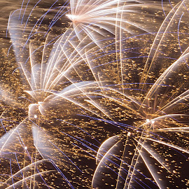 Explosion of Colour by Andro Andrejevic - Abstract Fire & Fireworks ( colour, patterns, explosions, fireworks, bangs, fire )