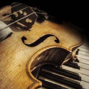 Violin ontop of piano 2 by Jackson Visser - Artistic Objects Musical Instruments ( music, keyboard, piano, violin, strings, instrument, bluegrass, fiddle )