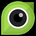 P Camera