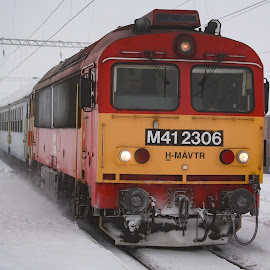 M41-2306 by Nagy Attila - Transportation Trains ( 134 )