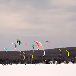 Ski kyte competition by Suzanne Blais - Sports & Fitness Snow Sports ( winter snow ski kyte competition sky forest trees )