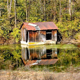 weathered shack by Kathie Chase - Buildings & Architecture Other Exteriors ( old shack, pond, weathered )