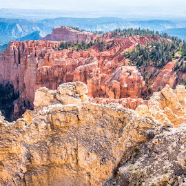 Red rocks of Bryce Canyon, UT by Brian Butters - Landscapes Caves & Formations ( national park, desert, cliffs, utah, formations, canyon, rocks, bryce canyon, usa, west )