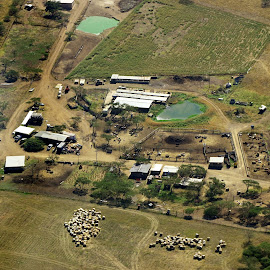 Aerial shot of a farm-stead by Ingrid Anderson-Riley - Landscapes Travel