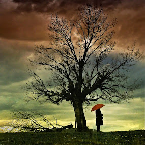 Waiting for the rain by Mladjan Pajkic - People Fine Art
