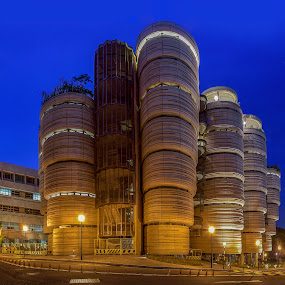 Tim sum building  by Jun Hao - Buildings & Architecture Public & Historical ( landscape 2015,  )