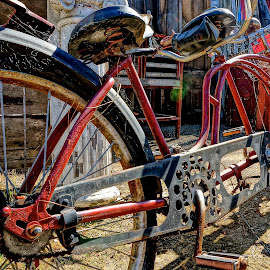 Tandem by Barbara Brock - Transportation Bicycles ( bike, tandem bicycle, antique bike, two-wheeler, old bike, bicycle )
