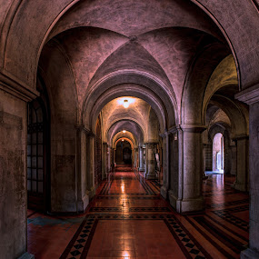 Universidad Católica Santiago by Charles Brooks - Buildings & Architecture Architectural Detail ( universidad, reflection, catholic, university, tiles, low key, columns, moody, santiago, catolica )