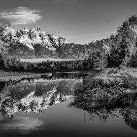 by Steven Aicinena - Black & White Landscapes
