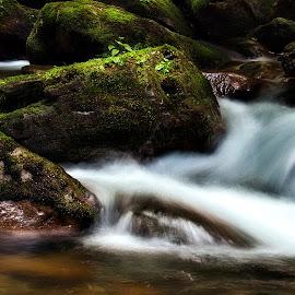 by Brook Kornegay - Landscapes Waterscapes (  )