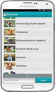 Dog Breeds - screenshot