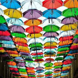 The city where it never rains by Alin Achim R - City,  Street & Park  Street Scenes ( umbrellas, colors, art, composition, town, street photography )