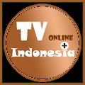 App TV Online Indonesia Plus apk for kindle fire