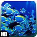 App Aquarium Wallpaper version 2015 APK
