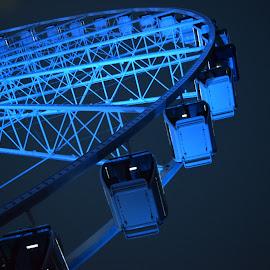 Blue Ferris Wheel by Michelle Bergeson - City,  Street & Park  Amusement Parks ( amusement ride, blue, dark, night, ferris wheel )