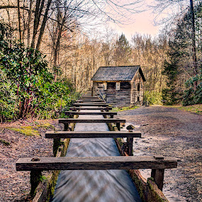 Mingus Mill by John Larson - Buildings & Architecture Public & Historical ( water, mill, flume, trees, brush )