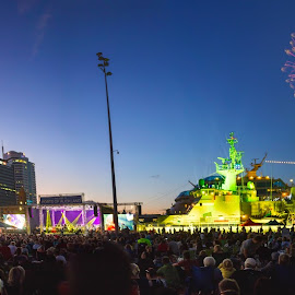 Auckland Anniversary Day 2016 by Anupam Hatui - City,  Street & Park  Amusement Parks ( anniversary day, auckland, fireworks, night, ciyscape, city )