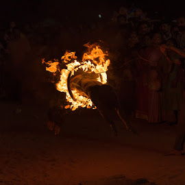 life through fire by Azad Nechikkade - City,  Street & Park  Street Scenes ( ring, street, india, kerala, festival, night, light, travel photography, fire )