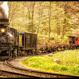 Red Caboose by James Eickman - Transportation Trains