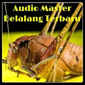 Download Audio Master Belalang Terbaru APK on PC