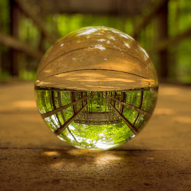 covered bridge by Michelle Eagan - Artistic Objects Still Life ( ball, foot, bright, green, sfa, crystal, sun, center, sky, trail, trees, brown, down, low, closeup )