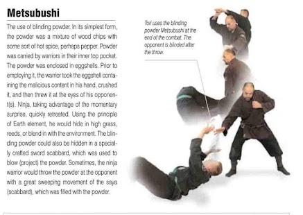 Download livro de ninjutsu