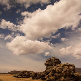 Tufa & Sky by John Shelton - Landscapes Deserts ( clouds, sky, desert, nevada, rock, tufa, rocks,  )