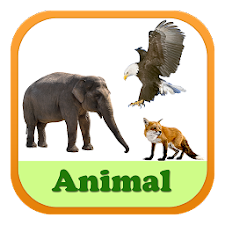 Animal Vocabulary