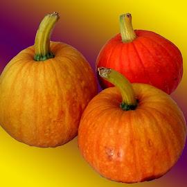 Pumpkin  by Asif Bora - Food & Drink Fruits & Vegetables (  )