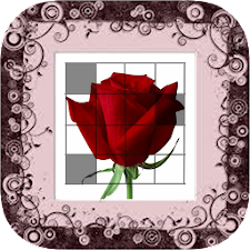 Picross Flower ( Nonogram )