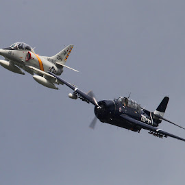 Douglas Dauntless and TA4 by Bruce Arnold - Transportation Airplanes