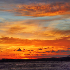 The perfect sunrise by Kristen O'Brian - Landscapes Sunsets & Sunrises ( clouds, orange, sky, land, yellow, sunrise, sun )