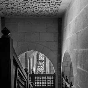 Stairway in Bahrain's Grand Mosque by Mike Allen - Black & White Buildings & Architecture ( blackandwhite, indoor, stairway, arches, bahrain )