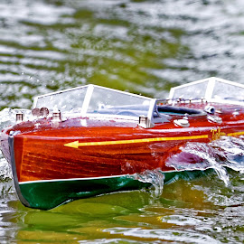 Speed Boat by Raphael RaCcoon - Artistic Objects Toys