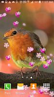 Screenshot of Flower Music Player Wallpaper