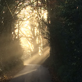 Hope ahead by Mark Beedell - Landscapes Travel ( rays of sun hope road ahead )