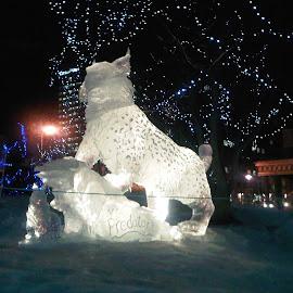 The Predator by Nibia Orona - City,  Street & Park  Street Scenes ( predator sculpture, ice sculpture, night scene, ice, big cat sculpture, anchorage alaska )