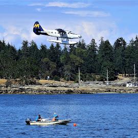 Float plane by Carol Leynard - Transportation Airplanes ( plane, floats, plane landing, water airoplane, float plane, water )