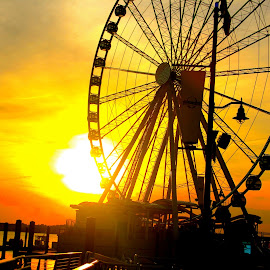 My Safe Harbor by Julia Hu - Novices Only Objects & Still Life ( ferris, harbor, wheel, national harbor, national, art, sun, photography, contrast, life, artsy, sunset, lifestyle, ferris wheel )
