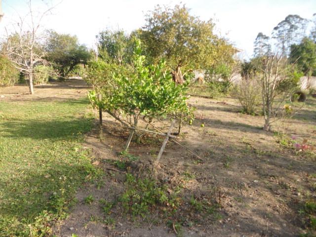 Chácara à Venda - Loteamento Sítio Pinheiral (Mailasqui)