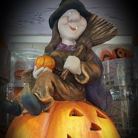 Strega di Halloween  by Patrizia Emiliani - Public Holidays Halloween ( strega, zucca, halloween )