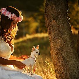 Magic by Cristian Manolache - Wedding Bride ( wedding photography, summer, wedding dress, magic hour, dog, bride )