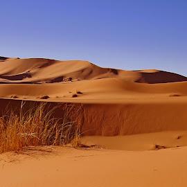by Nico Kranenburg - Landscapes Deserts ( desert, el-chabi, maroc )