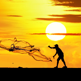 throwing fishing net during sunrise by อ้อมแอ้ม แม่มดราตรี - Landscapes Sunsets & Sunrises ( person, skyline, bright, silhouette, fish, people, time, sky, nature, shadow, lifestyle, brigde, dark, working, light, black, orange, colors, lake, fly, active, tranquility, shore, smooth, moment, one, catch, ocean, net, sun, throw, life, style, evening, man, water, seashore, sport, sea, relaxation, morning, sunset, touching, outdoor, caring, cloud, night, fishing, sunrise, fisherman, daylight, river )
