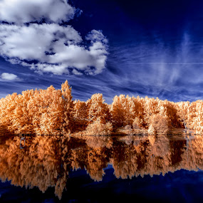 Reflected dreams by Thorsten Scheel - Landscapes Waterscapes ( water, clouds, ir, infrared, trees )