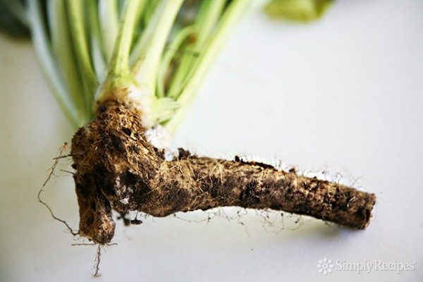 How to Prepare Horseradish Recipe | Yummly