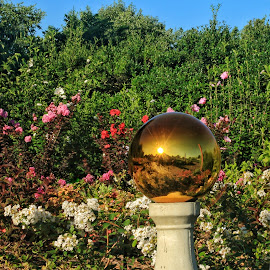 Mirrored globe by Margie Troyer - Artistic Objects Other Objects