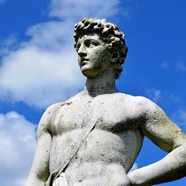 Statue by Lauren Galanty - Buildings & Architecture Statues & Monuments ( person, statue, stone, castle, monument, nikon, portrait )