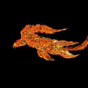 Fire by Ghazala .S. Mujtaba - Web & Apps App Icons